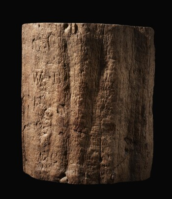 """A large section of a tree trunk, varnished and polished to show the natural grain. The surface is scratched, and the initials """"C. C."""" and """"W. B."""" are visible carved into the surface."""